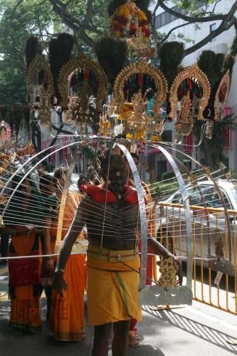 thaipusam,festival hindous,tamoul